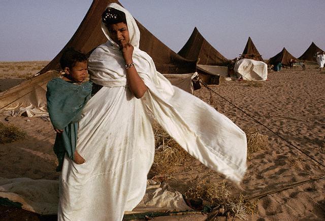 Beduinos mauritanos