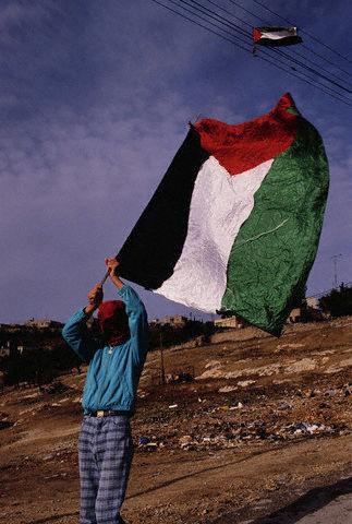 Muchacho palestino con bandera