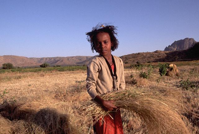 Muchacha eritrea