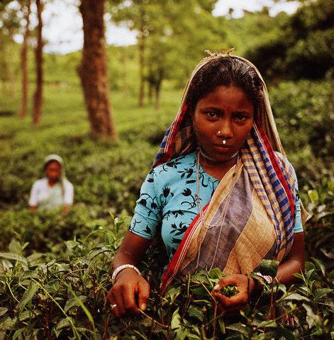 Mujeres agricultoras de Blangadesh