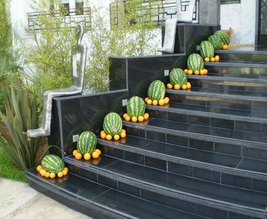 Instalación vegetal