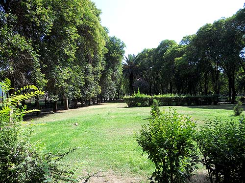 Park Al-Amma