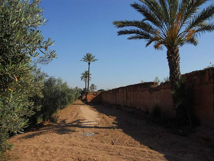 Agdal Walls