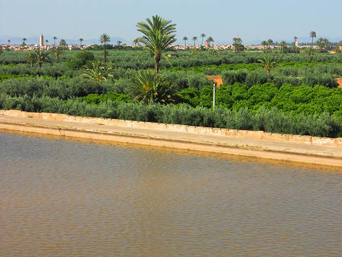 Agdal Pond